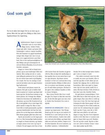 11_Side 498.fm - Den norske tannlegeforenings Tidende