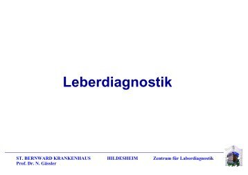 Leberdiagnostik