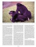 Zaterdag 10 mei - Planckendael - Page 4