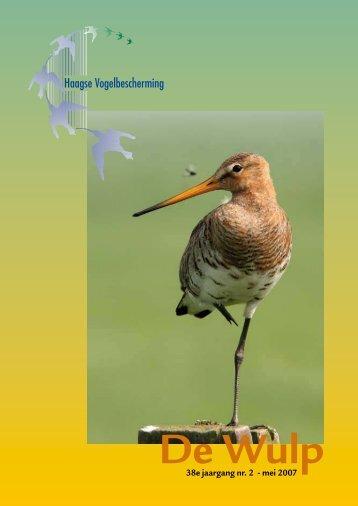 Mei 2007 - Haagse Vogelbescherming