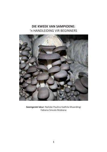 DIE KWEEK VAN SAMPIOENE: 'n HANDLEIDING VIR BEGINNERS