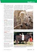 Wen 'n tropiese vakansie - Page 4