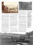 Ach Lieve Tijd Schiedam deel 2, 400 jaar jenever - img.coret.org - Page 6