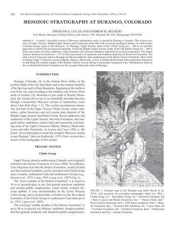 Mesozoic Stratigraphy at Durango, Colorado - New Mexico ...