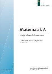 Matematik A, hhx, den 16. august 2010 (pdf)