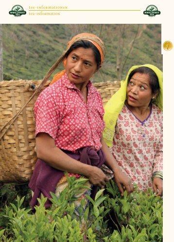 Tee-Informationen Tea-Information - Mount Everest Tea Company ...