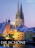 AVISO EINKEHR - ADFC Regensburg - Seite 2