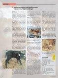 Kälberdurchfall – Massnahmen zur Bekämpfung - RGD ... - Page 4