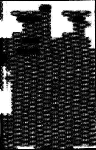dpo_10081.pdf
