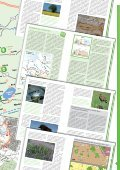 Naturerlebnis Mittelweser - ADFC Nienburg - Seite 3