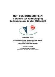RUP 006 BORGERSTEIN Verzoek tot raadpleging - LNE.be