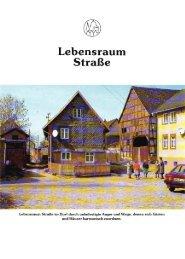 Lebensraum Straße - ADFC Regensburg