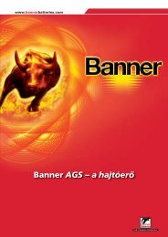 Banner Katalógus - banner akkumulátor