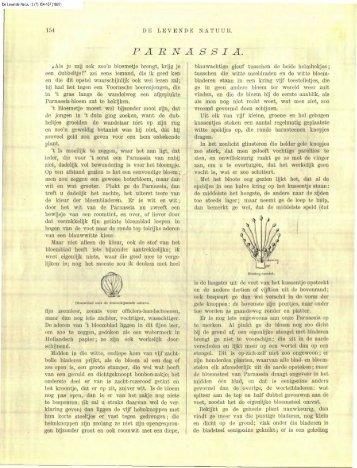 Heimans, E. (1897) Parnassia. DLN 2: 154-157 - Duinen en mensen
