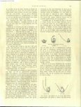 Heimans, E. (1897) Parnassia. DLN 2: 154-157 - Duinen en mensen - Page 2