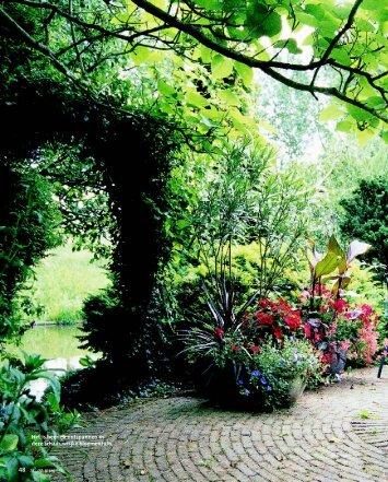 02-23 De tuin van Tineke Netelenbos.pdf - Janneke Brinkman