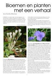 Bloemen en planten met een verhaal - Arboretum Oudenbosch
