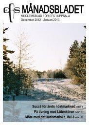 December 2012-Januari 2013 - Lötenkyrkan