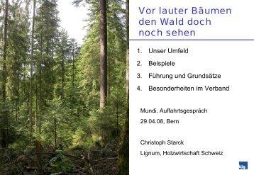 vor lauter Bäumen den - Mundi Consulting