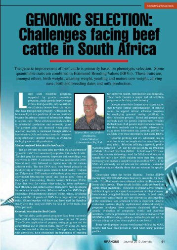 GENOMIC SELECTION: Challenges facing beef cattle in ... - Brangus