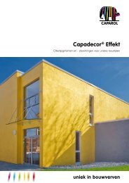 Download PDF - Caparol