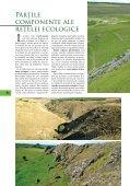 Reţeaua ecologică. Provocări. Soluţii - Biotica Ecological Society - Page 6