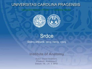 Sd - Anatomický ústav 1.LF UK - Univerzita Karlova