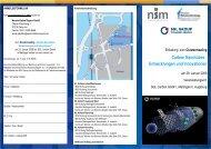 Flyer als PDF-Datei - Nanosystems Initiative Munich