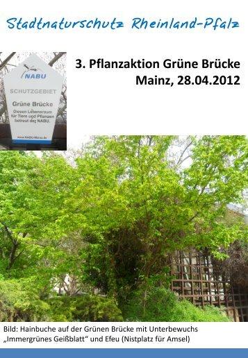3. Pflanzaktion Grüne Brücke Mainz, 28.04.2012 - NABU Mainz und ...