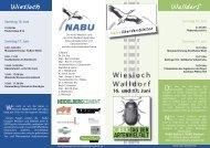 Faltblatt zum Tag der Artenvielfalt - Nabu Wiesloch