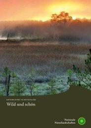 Nationalparks in Deutschland - Wild und schön