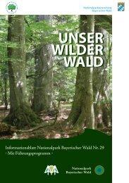 Unser Wilder Wald Nr. 29 Barrierearm - Nationalpark Bayerischer ...