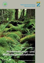Walderhaltungs-und Waldpflegemaßnahmen - Nationalpark ...