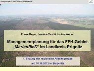 """Managementplanung für das FFH-Gebiet """"Marienfließ"""" im Landkreis ..."""