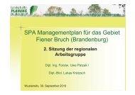 """2. Treffen der regionalen Arbeitsgruppe SPA """"Fiener Bruch"""""""