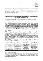 Rahmenplan zur Prioritätensetzung bei der Förderung von ...