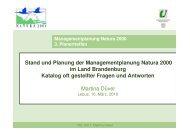 Stand und Planung der Managementplanung Natura 2000 im Land ...