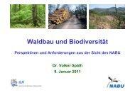 Waldbau und Biodiversität