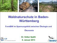 Waldnaturschutz in BW, V.Spaeth