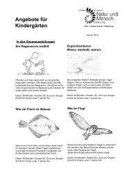 Angebote als PDF-Datei - Landesmuseum Natur und Mensch
