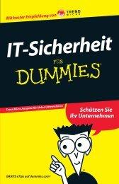 IT-Sicherheit Für Dummies - INSIGMA IT Engineering GmbH