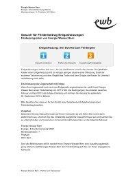 Gesuch für Förderbeitrag Erdgasheizungen - Energie Wasser Bern