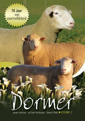 Kliek hier vir die 2010 joernaal - SA Stamboek
