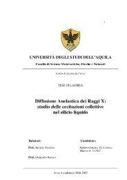 studio delle eccitazioni collettive nel silicio liquido