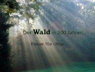 Der Wald in 100 Jahren..
