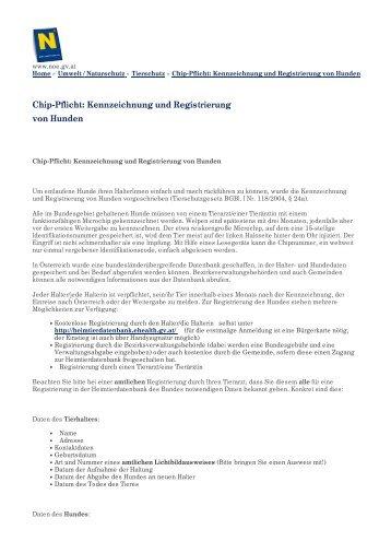 Chip-Pflicht: Kennzeichnung und Registrierung von Hunden