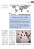 - safari med alvor - Aktuel Naturvidenskab - Page 2