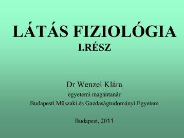 Látás fiziológia_1