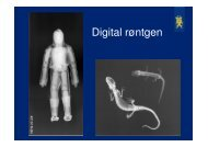 Moesgaard Museum digital røntgen 26.10.pdf