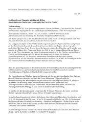 Sachbericht und Finanzbericht über die Hilfen - Nord Süd Forum ...